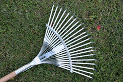 Rake Stock Photo
