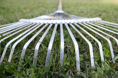 Rake Royalty Free Stock Image
