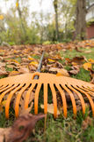 The rake in autumnal garden Royalty Free Stock Photo