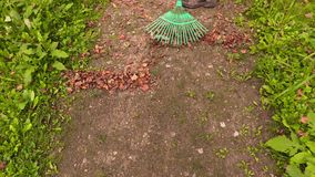 Rake collect leaves on the path stock footage