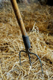 Rake in the hay Royalty Free Stock Image