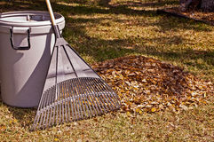 Rake and leaves Royalty Free Stock Images