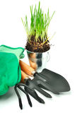 Rake, shovel, gloves, steel pot with grass Stock Photo