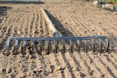 Rake on soil. Rake on loosened soil closeup Stock Images