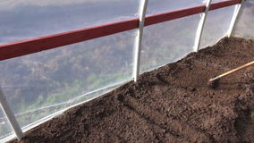 Rake soil in spring time greenhouse for sowing stock video