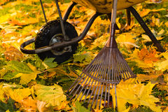 Rake and wheelbarrow Stock Images