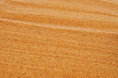 Raked sand background. Closeup of raked sand of a beach, of a sandpit or of a zen garden Royalty Free Stock Images