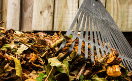 Raked Up Stock Photo