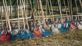 Rakes. Group of new red and blue rakes for leaves in a row Royalty Free Stock Image