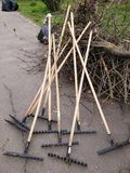 Rakes. A lot of rakes in the park Royalty Free Stock Photography
