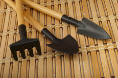 Rakes and shovels for replanting closeup Royalty Free Stock Photo