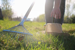 Rakes to collect old grass. Clean area backyard at a country house from old leaves and grass stock image