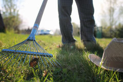 Rakes to collect old grass. Man with a lawn rake cleans the country of excess debris royalty free stock photo