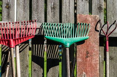 Rakes. Which are placed against a fence in the garden Stock Image