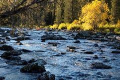 Rakhmanovskoe River in East Kazakhstan Stock Photo
