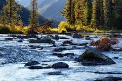 Rakhmanovskoe River in East Kazakhstan Stock Photography