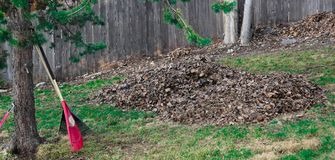 The Raking is Done Finally. Huge pile of leaves that had been raked in the spring, in Anchorage, Alaska Royalty Free Stock Photography