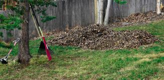 The Raking is Done Finally. Huge pile of leaves that had been raked in the spring, in Anchorage, Alaska Royalty Free Stock Image