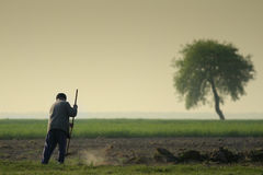 Raking farmer. On a acre in the morning Royalty Free Stock Photography