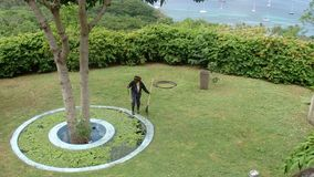 Raking a garden in the caribbean. A gardener cleaning around a fish pond in the tropics stock footage