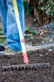Raking the Garden. Gardener raking over soil  in a vegetable garden Stock Photos