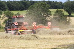 Raking Hay #1. A farmer uses a rotational hay rake to rake up the cut and dried grass in to lines ready for baling Royalty Free Stock Photo