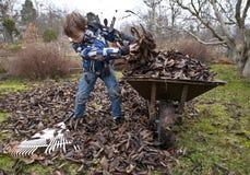 Raking leaves. Young boy raking leaves in the garden Stock Photography