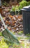 Raking Leaves Stock Photos