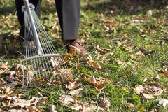 Raking leaves Royalty Free Stock Photos