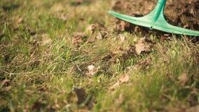 Raking leaves in a garden. Mature woman raking leaves in a garden. On the background of spring forest. Close up stock footage