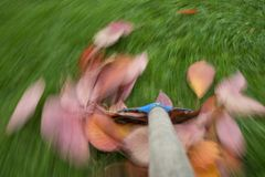 Raking leaves. Autumn work in the garden - long exposure time - accentuating movement in the photo royalty free stock photos
