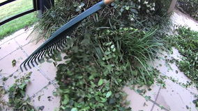 Raking Leaves stock video footage