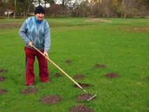 Raking molehills Royalty Free Stock Image