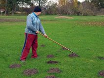 Raking molehills 2 Stock Photo