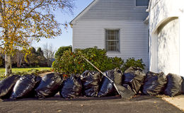 Raking up Leaves - Bags Filled in Lineup Stock Images