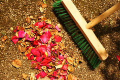 Raking Up Rose Petals and Dead Leaves Stock Image
