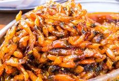 Rakknivmussla med söt chilisås Royaltyfria Foton