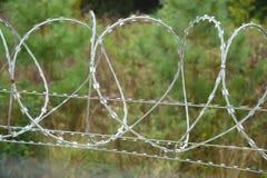 Rakknivtråd som överträffar ett säkerhetsstaket Fotografering för Bildbyråer