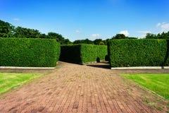 Raksträcka för vägkvarter in i trädväggarna Royaltyfria Foton