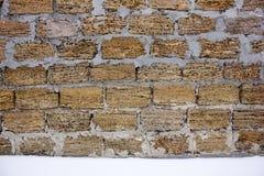 Rakushnjak или coquina текстуры Кирпичи облицовывают продавать песка ископаемых кораллов, губок, раковин, rapanov, спонгиозной по Стоковое Фото