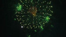 Rallentatore della celebrazione dei fuochi d'artificio alla notte archivi video