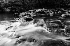 Rallenti il flusso nella foresta Fotografie Stock Libere da Diritti