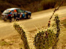 Rally car in desert Stock Image