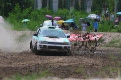 The Rally Championship Royalty Free Stock Photo