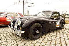 Rally of classical cars, Moscow, jaguar Royalty Free Stock Photography