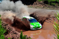 Rally green Royalty Free Stock Photography