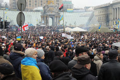 Rally in Kyiv. Stock Photo