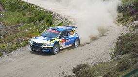 Rally portugal Royalty Free Stock Image