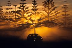 Rally Sunset. A rally car drives through dust with a spectacular sunset amongst pine trees Stock Photography