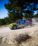Rally of Turkey. WRC stock photos